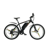 Low Price China Adult Electric Bike on Sale