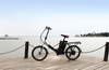 Cheap Small Folding Electric Bike for Sale
