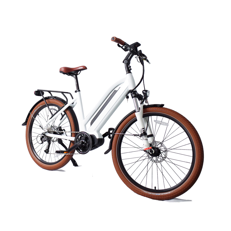 Long Range Green City Mid-drive Electric Bike with CE